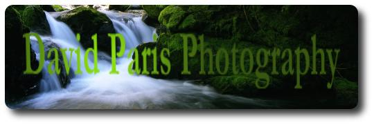 David Paris Photography